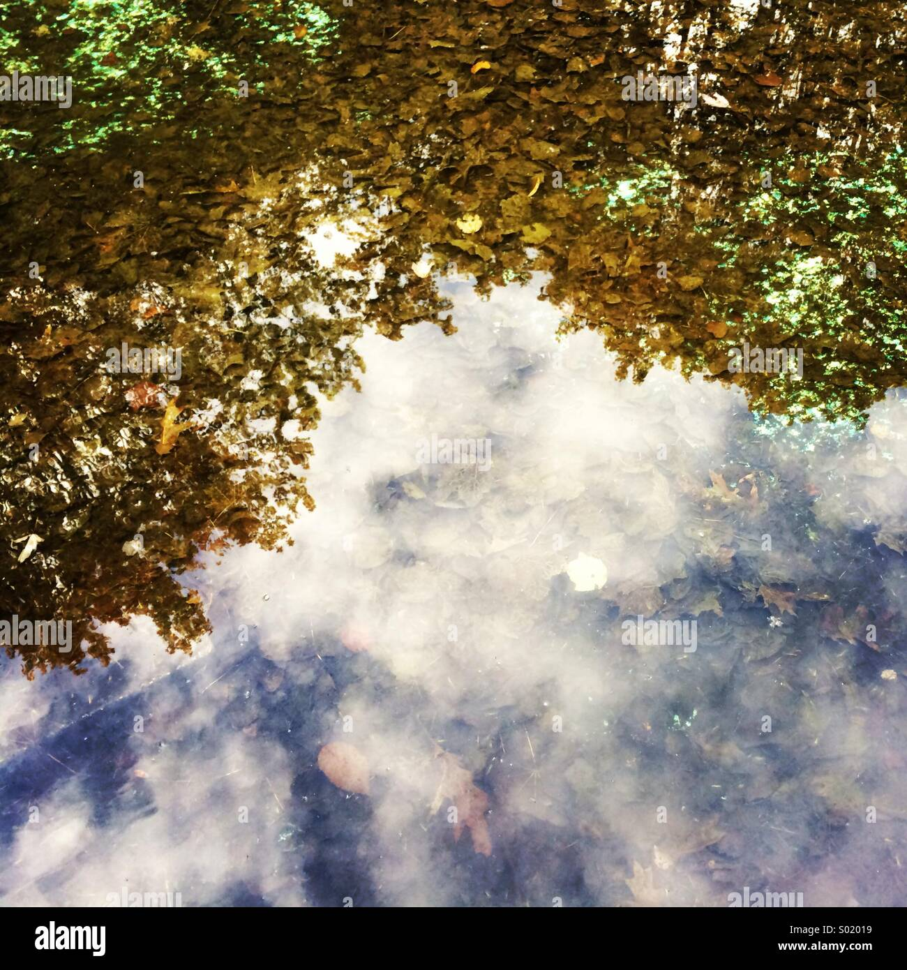 Reflected clouds - Stock Image