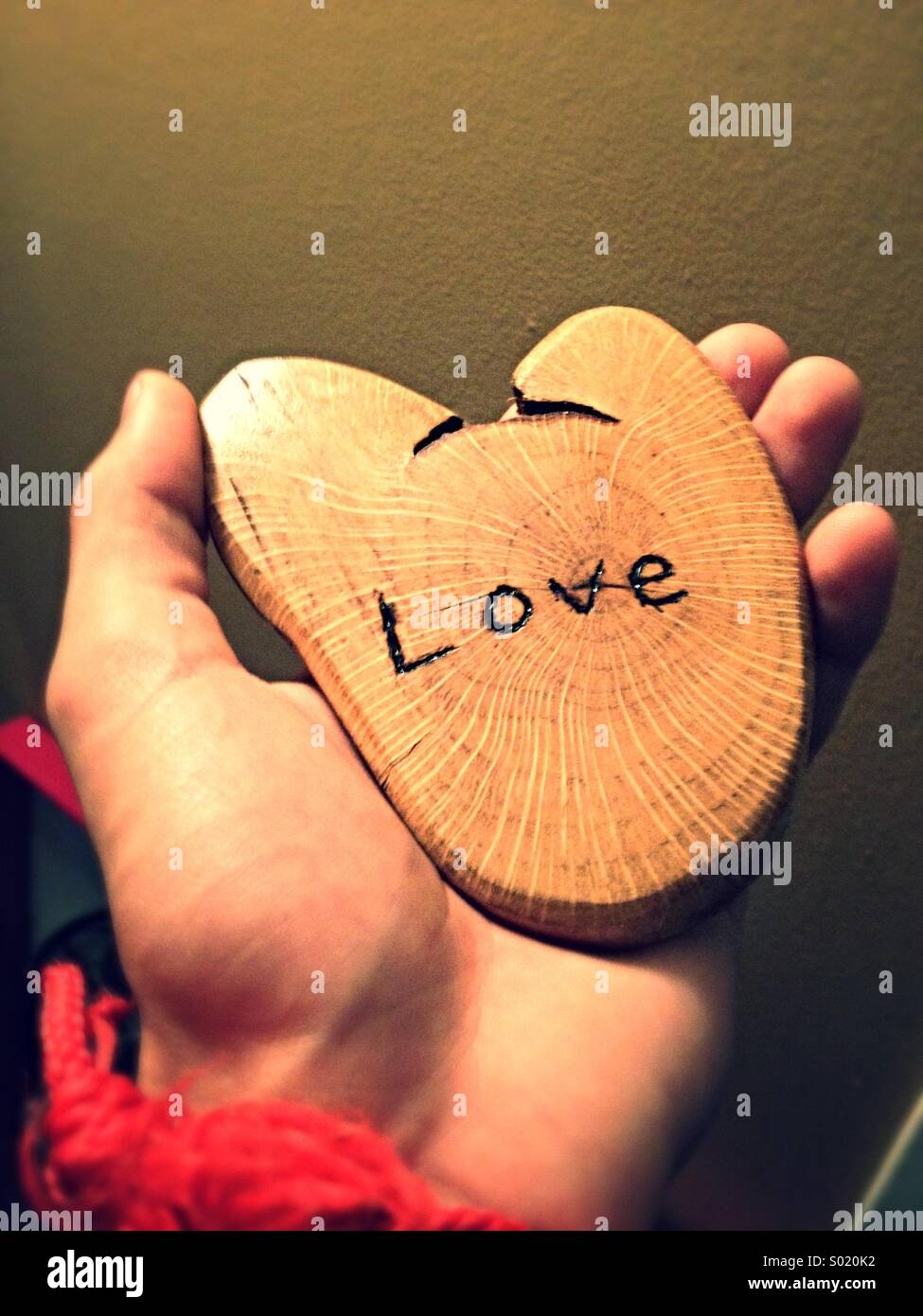Birch wood 'love' - Stock Image