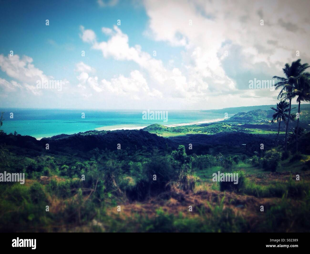 Barbados, St Lucy - Stock Image