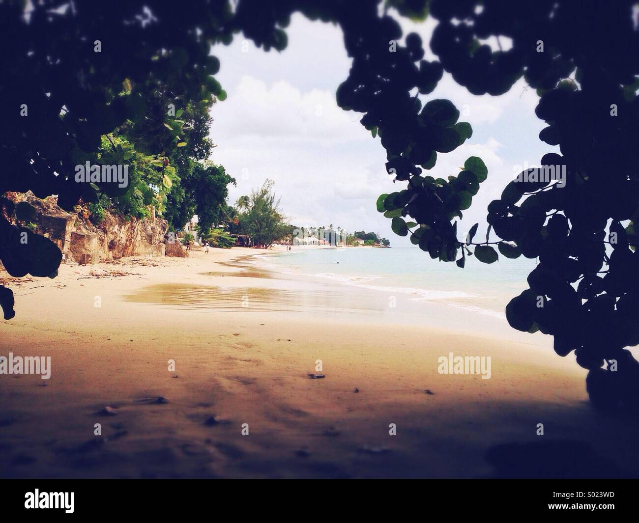 Barbados beach - Stock Image