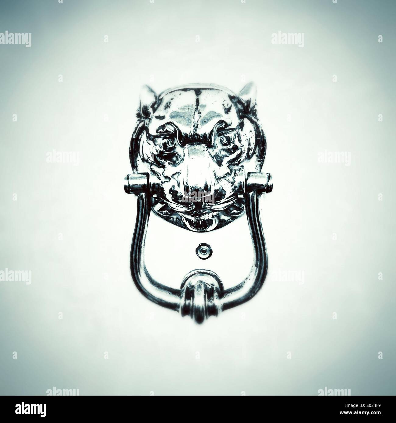 Lions head knocker on white door - Stock Image