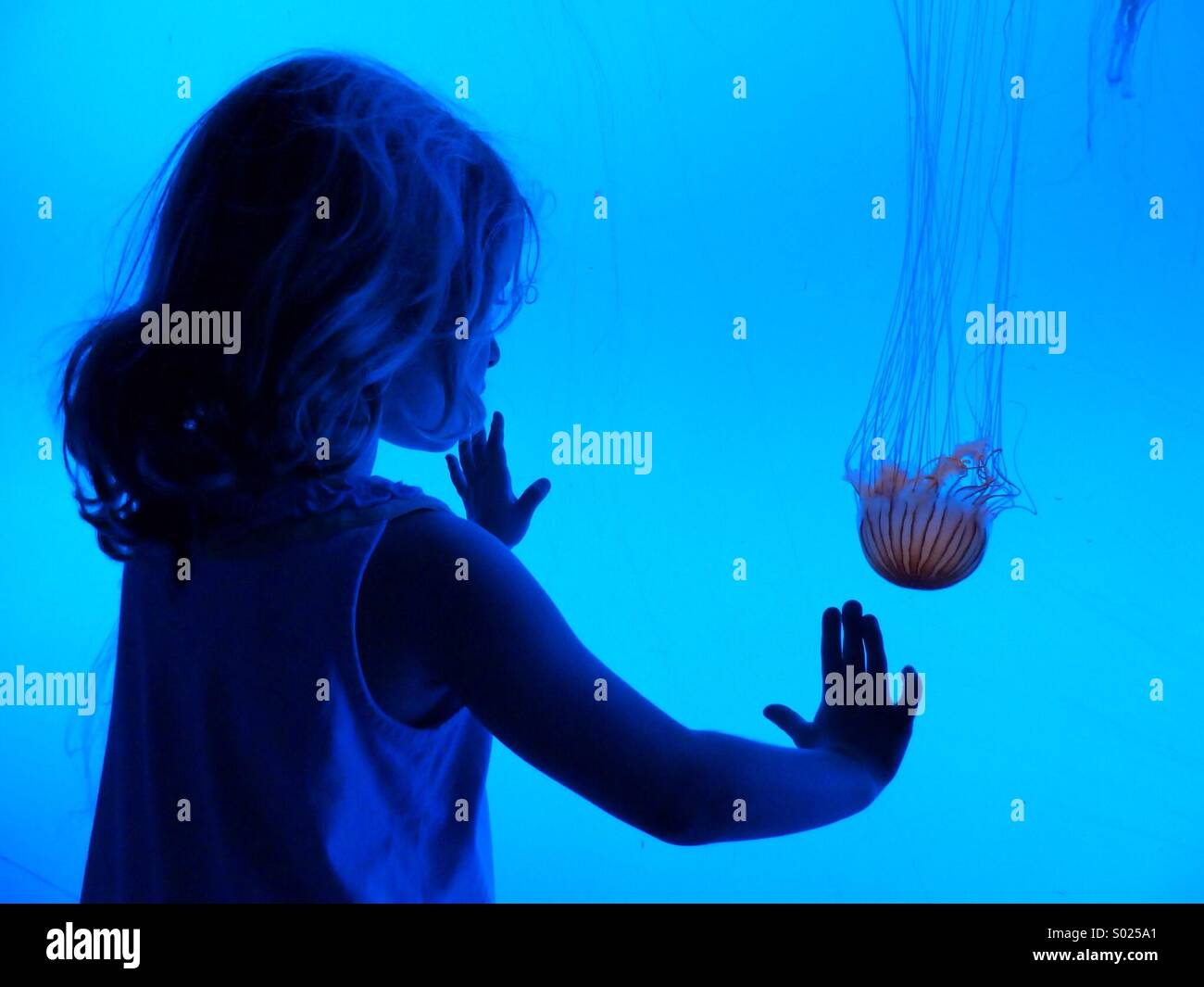 Under blue view - Stock Image