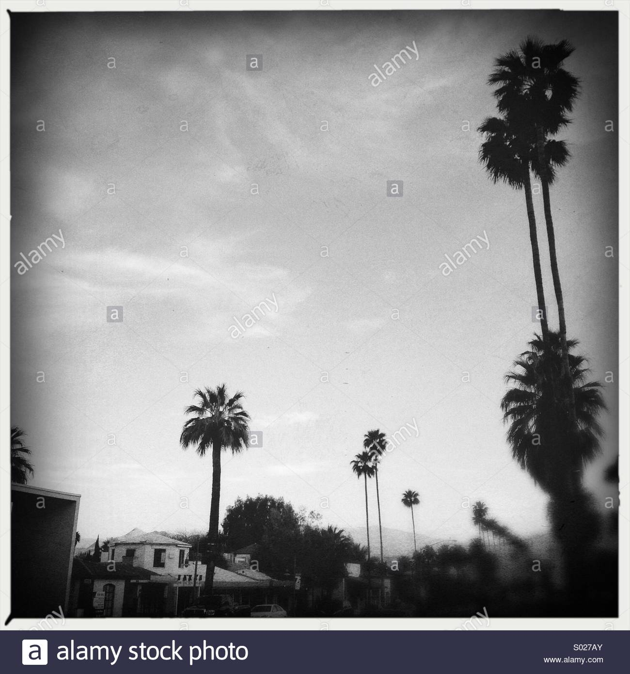 Nostalgic Summer Sweet Moment in Black & White on a road trip to Palm Springs California - Stock Image
