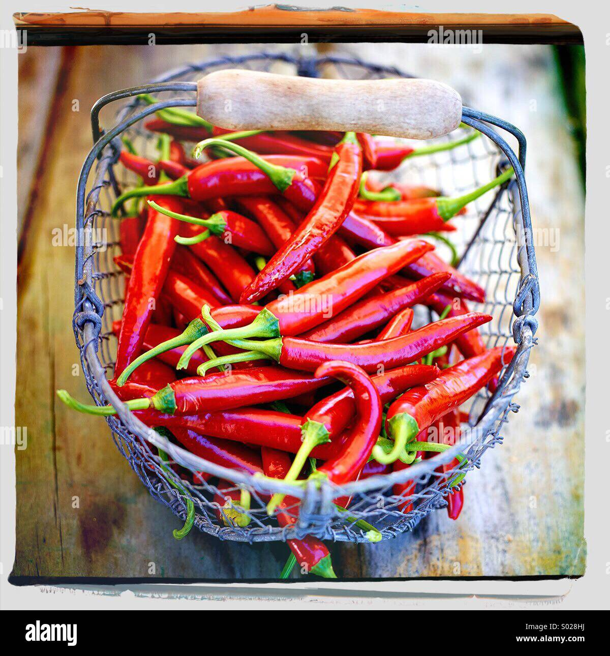 Basket of red hot chilli peppers - Stock Image