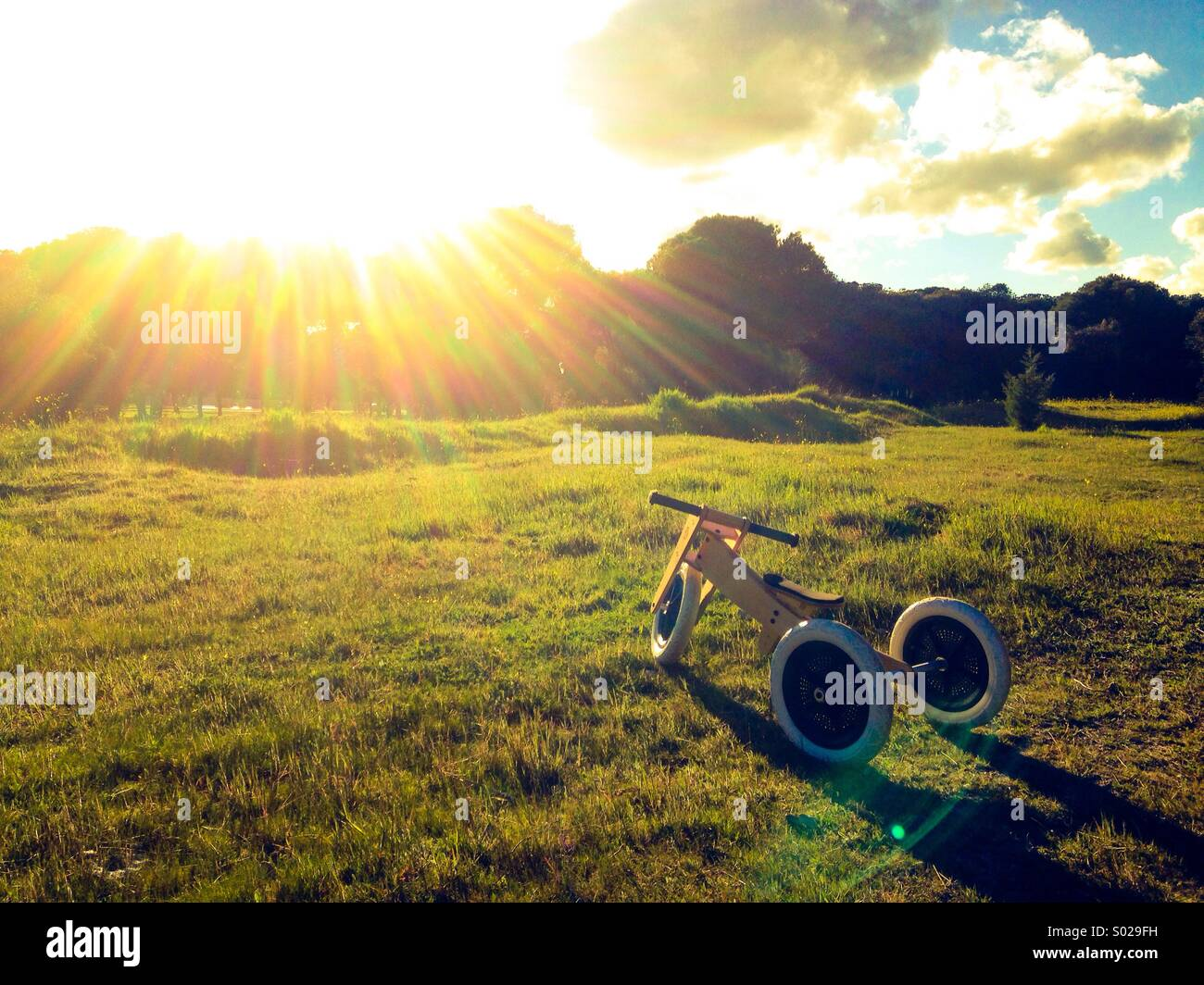 Tricycle on the grass - Stock Image