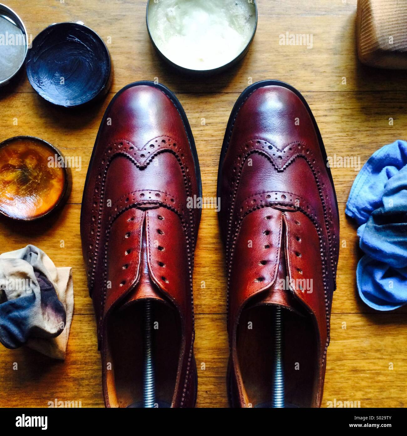 A pair of brown wingtip brogues lined up after a polish and cleaning work, surrounded by polishing tools - Stock Image