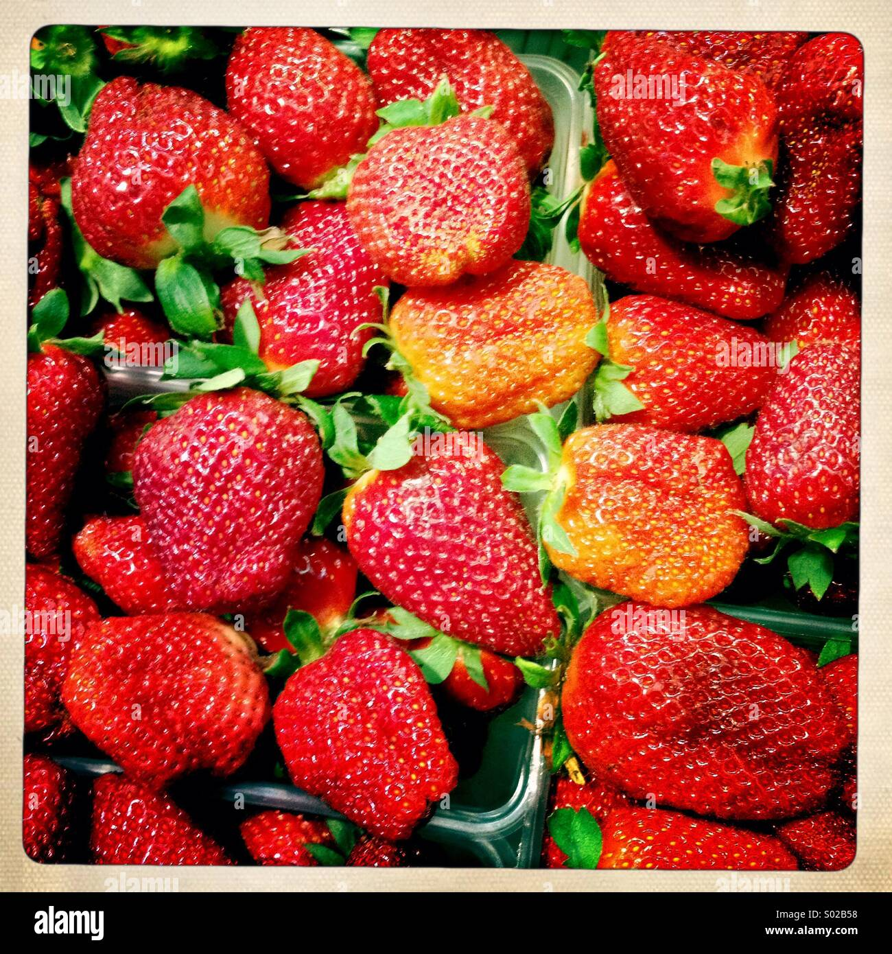 Red strawberries - Stock Image