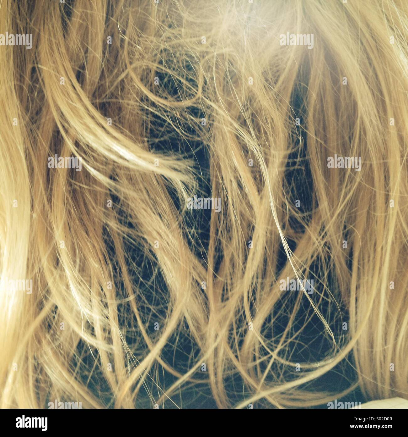 Messy tangled blond hair - Stock Image