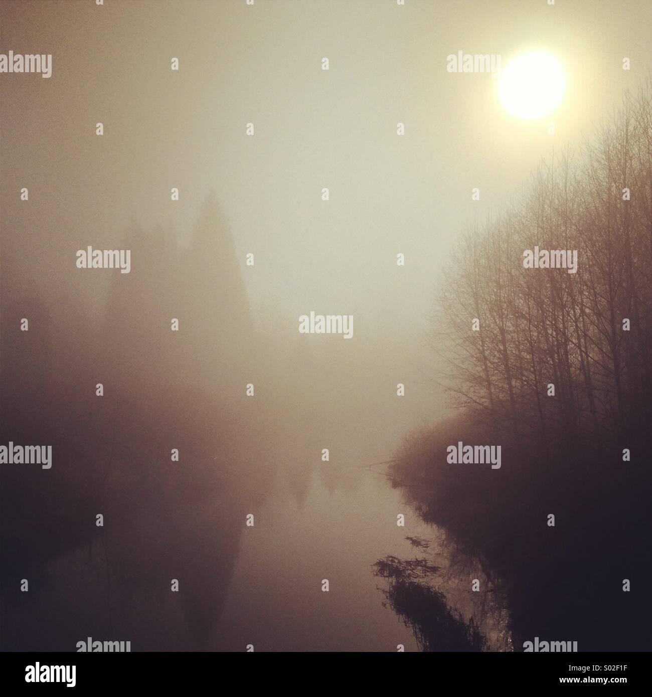 Creepy foggy river - Stock Image