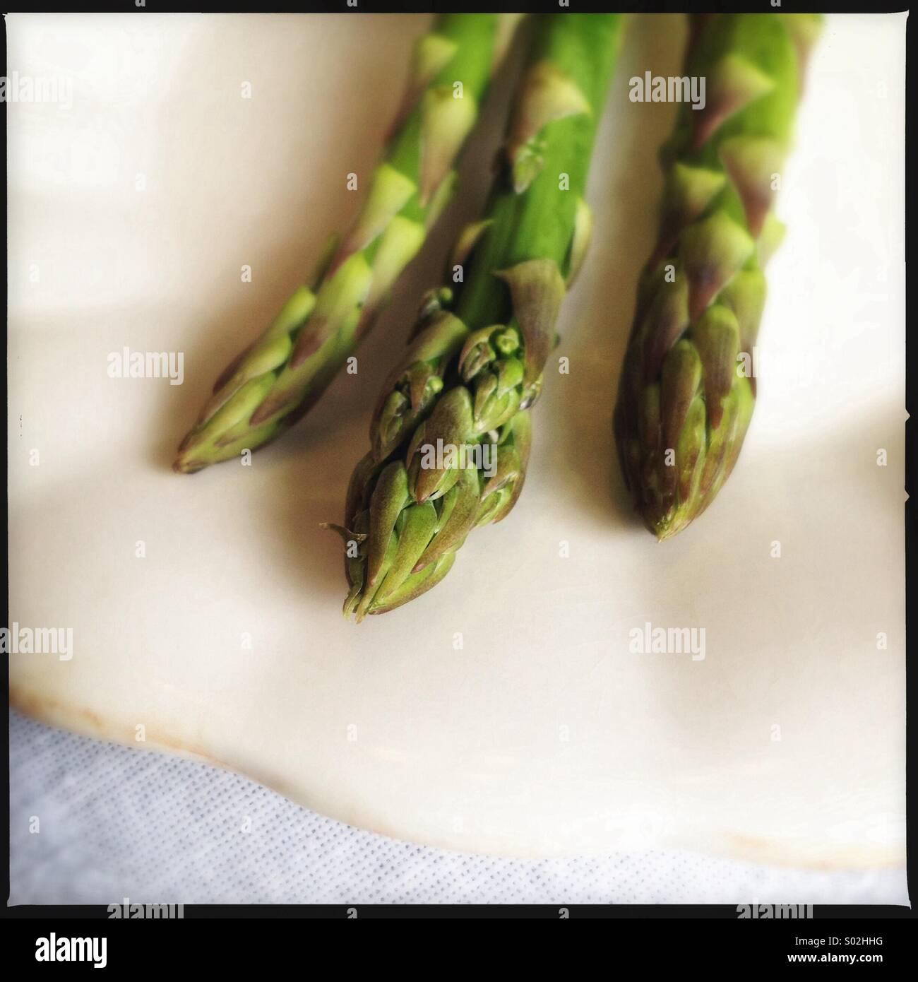 Raw Asparagus - Stock Image
