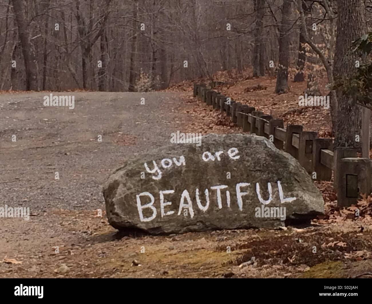 You are beautiful - Stock Image