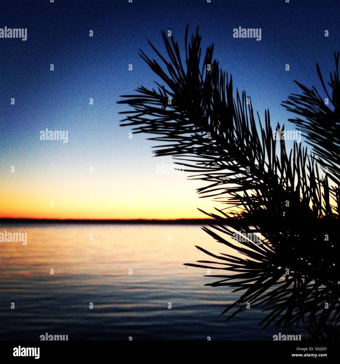 Evening over water - Stock Image