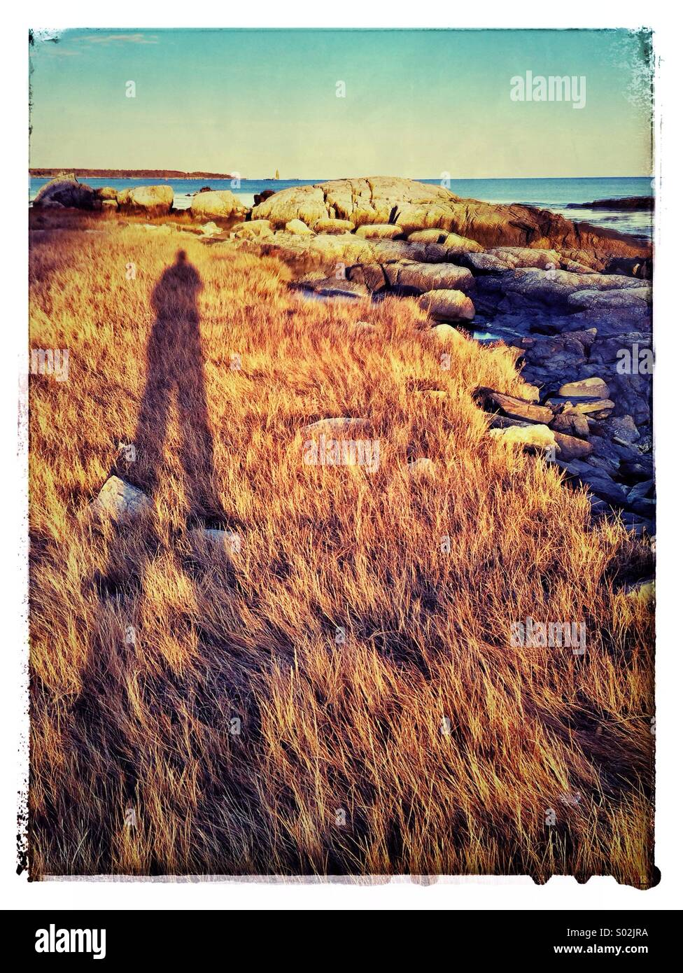 A man's shadow stretches over marsh grass in Rye, New Hampshire. Odiorne Point State Park. - Stock Image