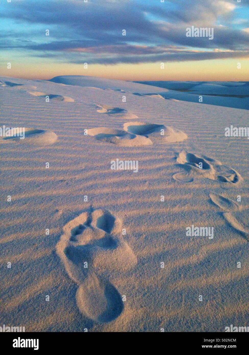 Footprint at White Sands National Monument - Stock Image