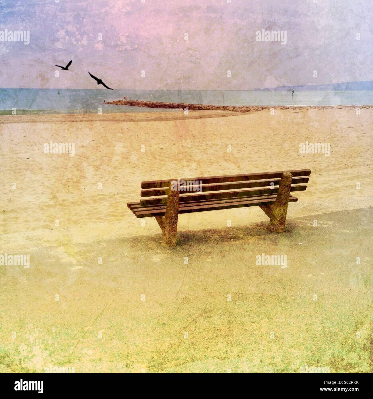 Bench by the sea with birds,Dorset, UK - Stock Image