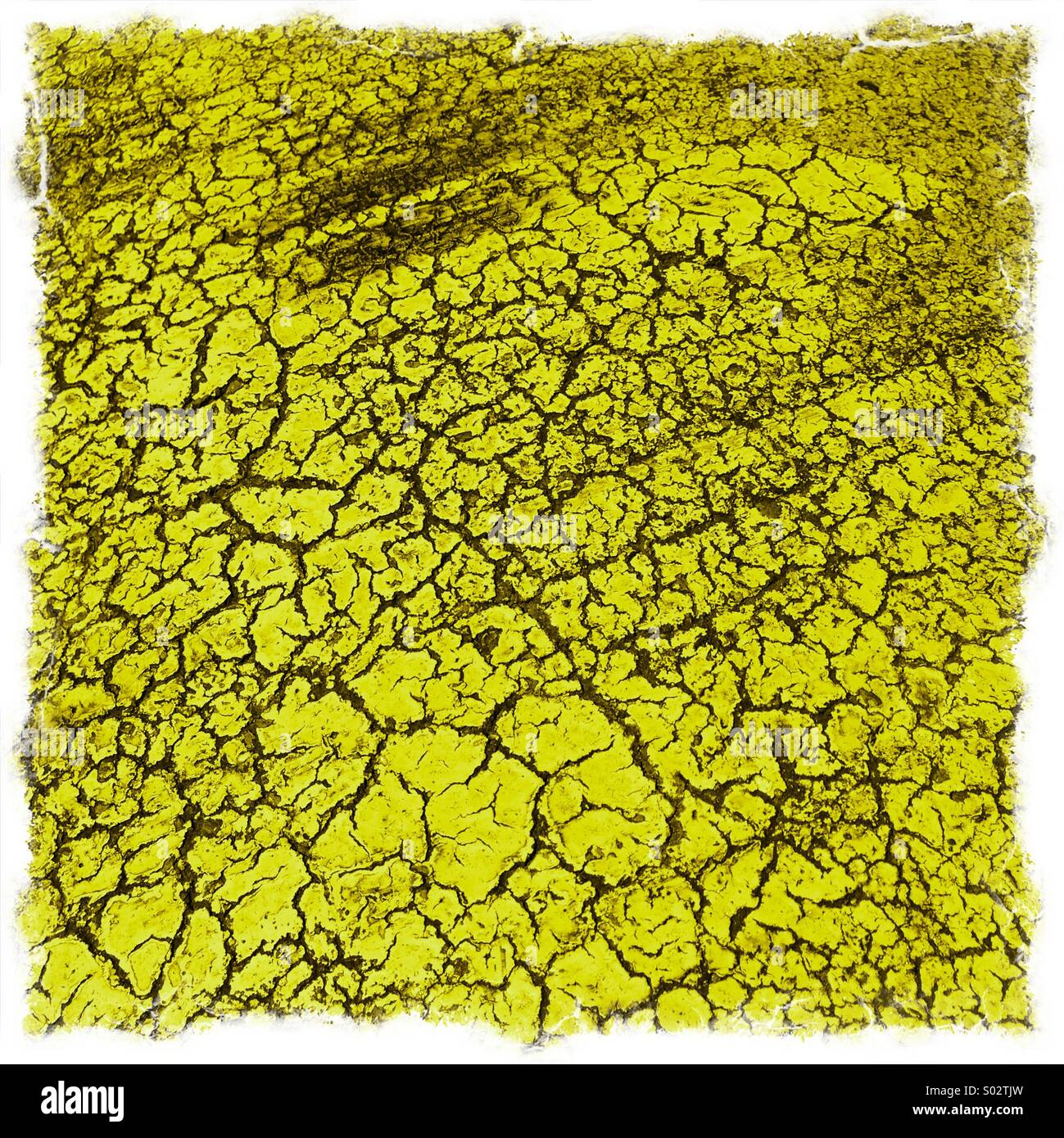 Pavement colour - Stock Image