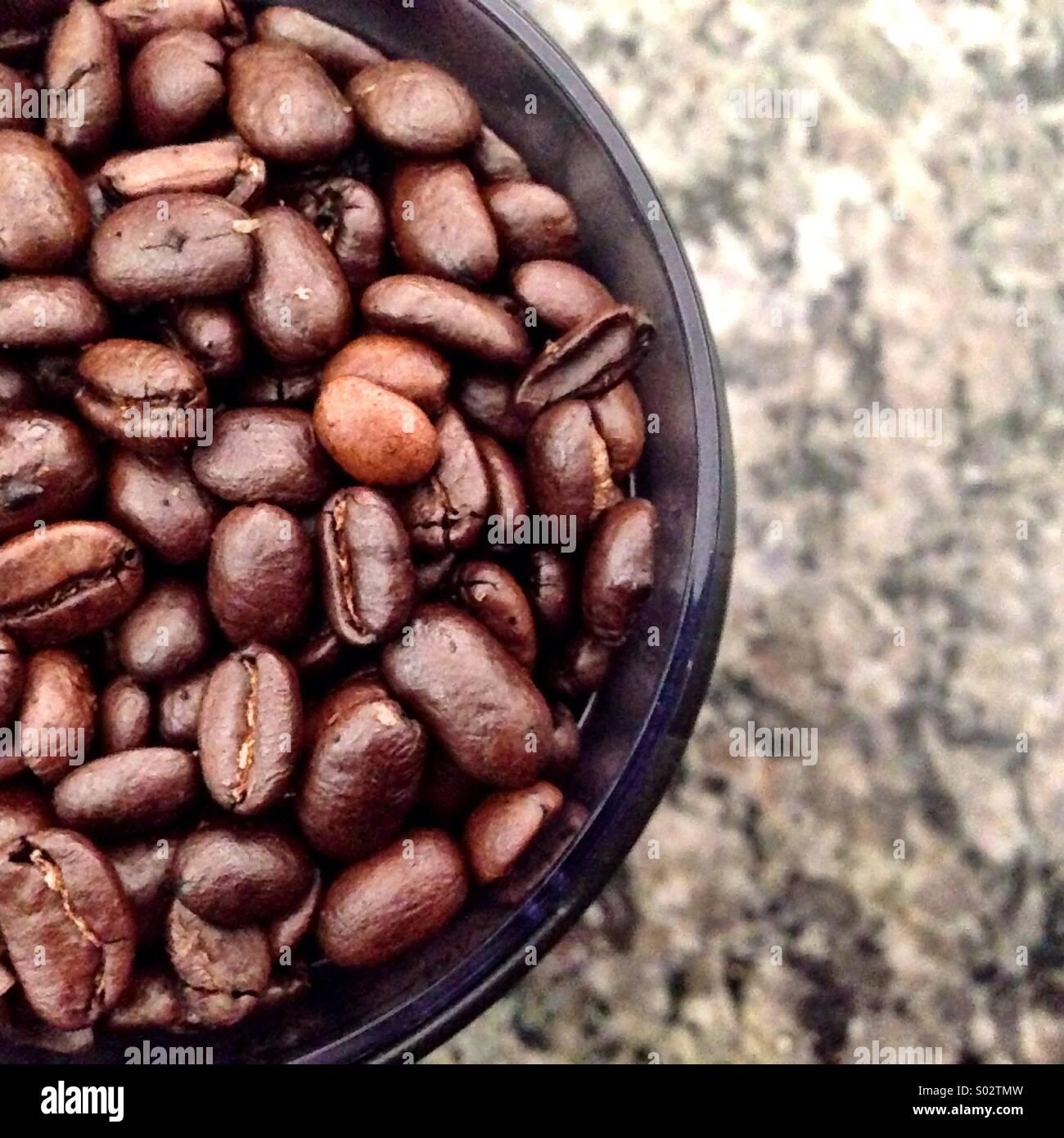 Coffee beans. - Stock Image