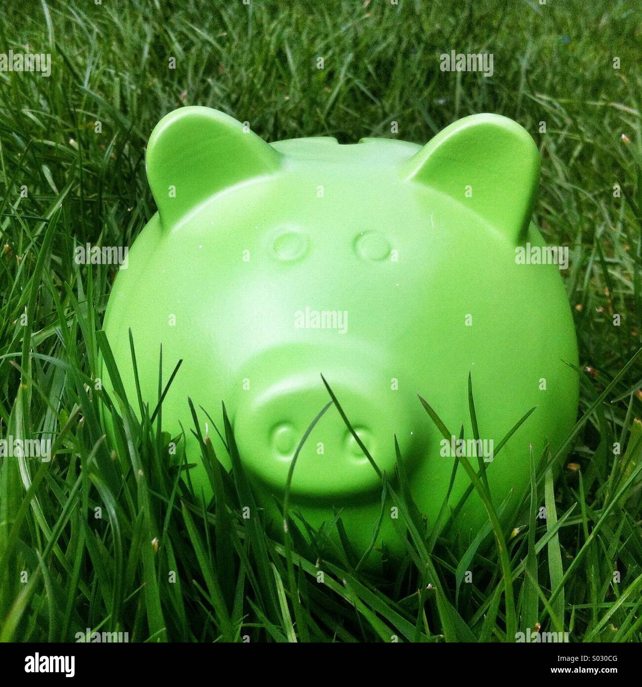 Green piggy bank style money box in long green - Stock Image