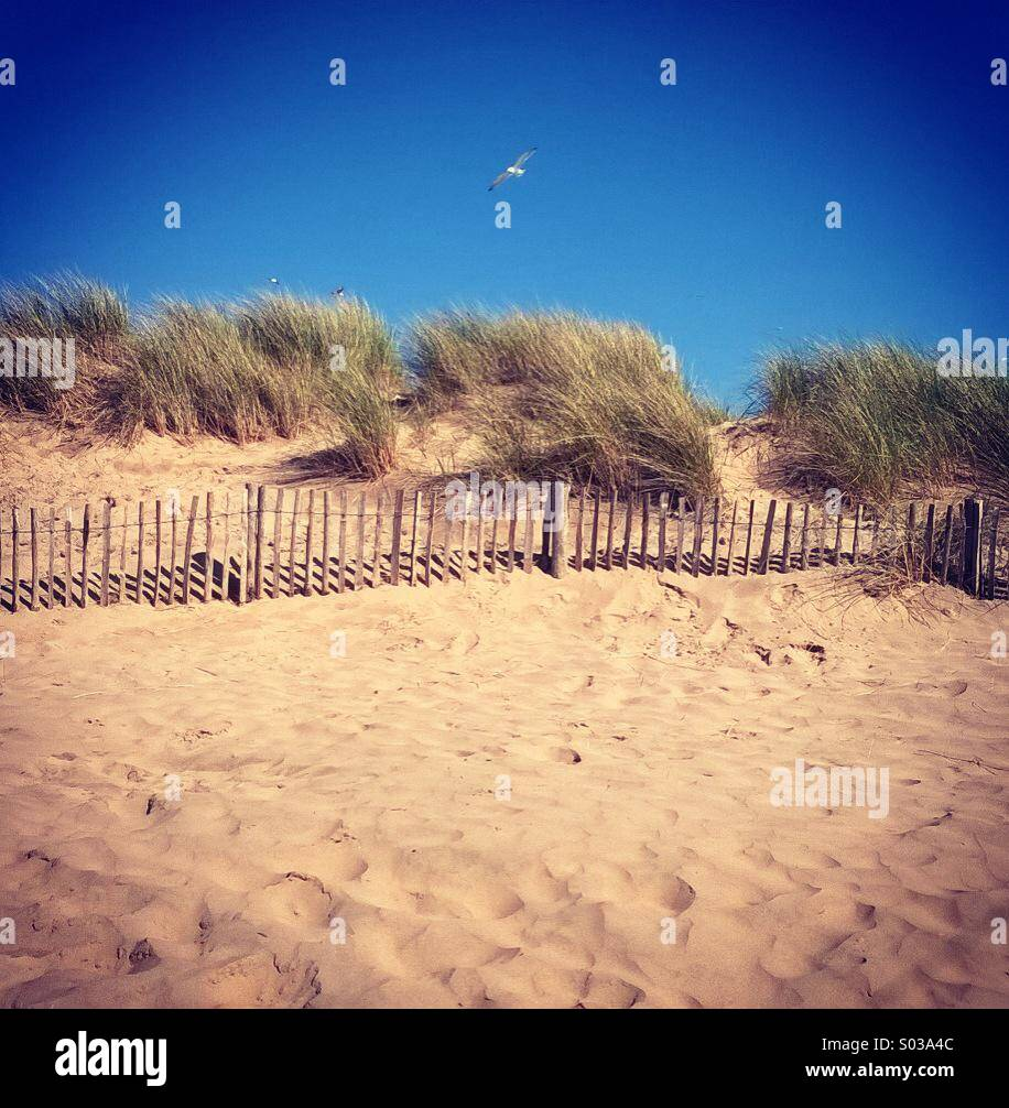 Camber beach sand dunes, Camber, Sussex England April 2014 Stock Photo