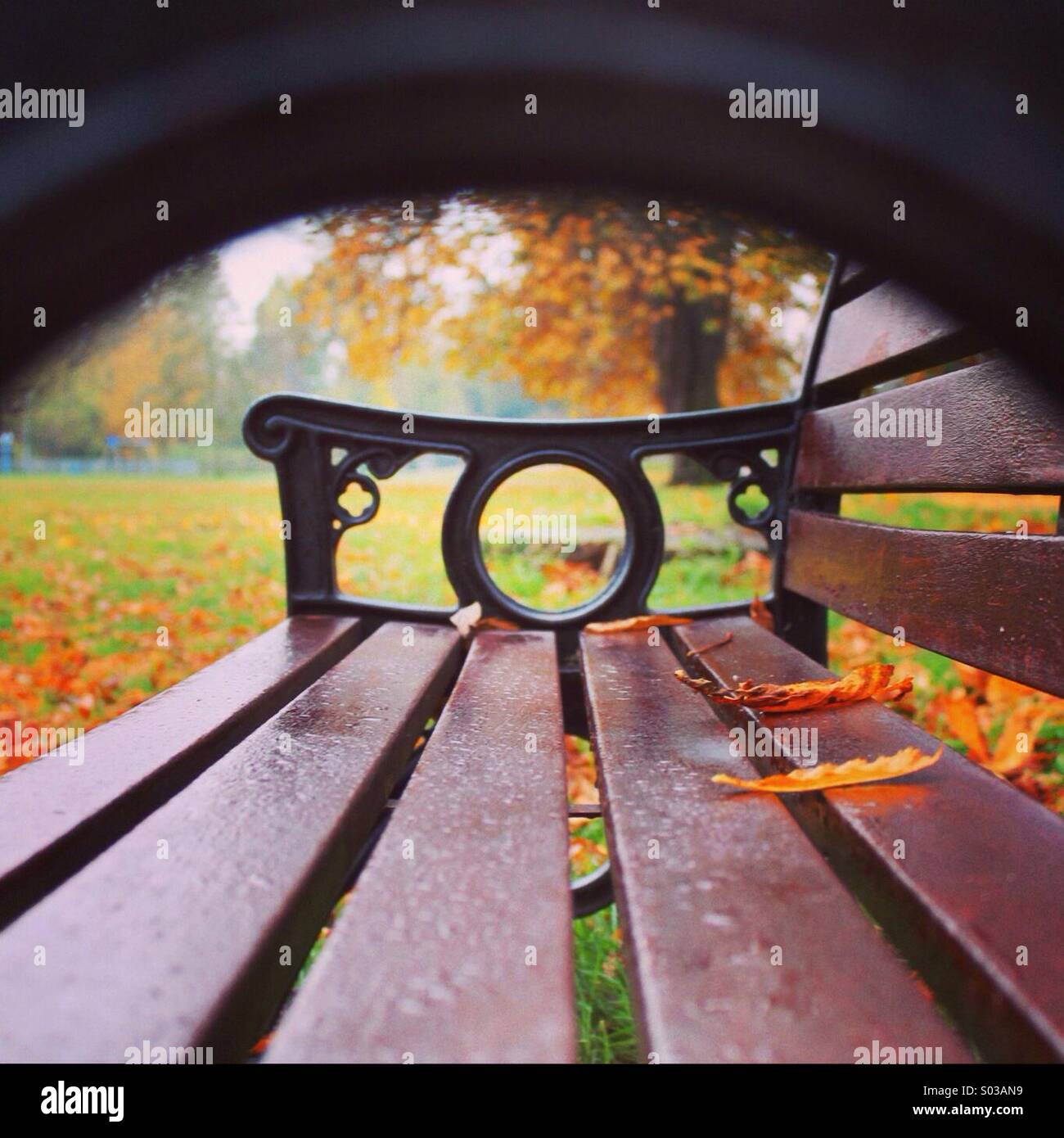 A seat in the park - Stock Image