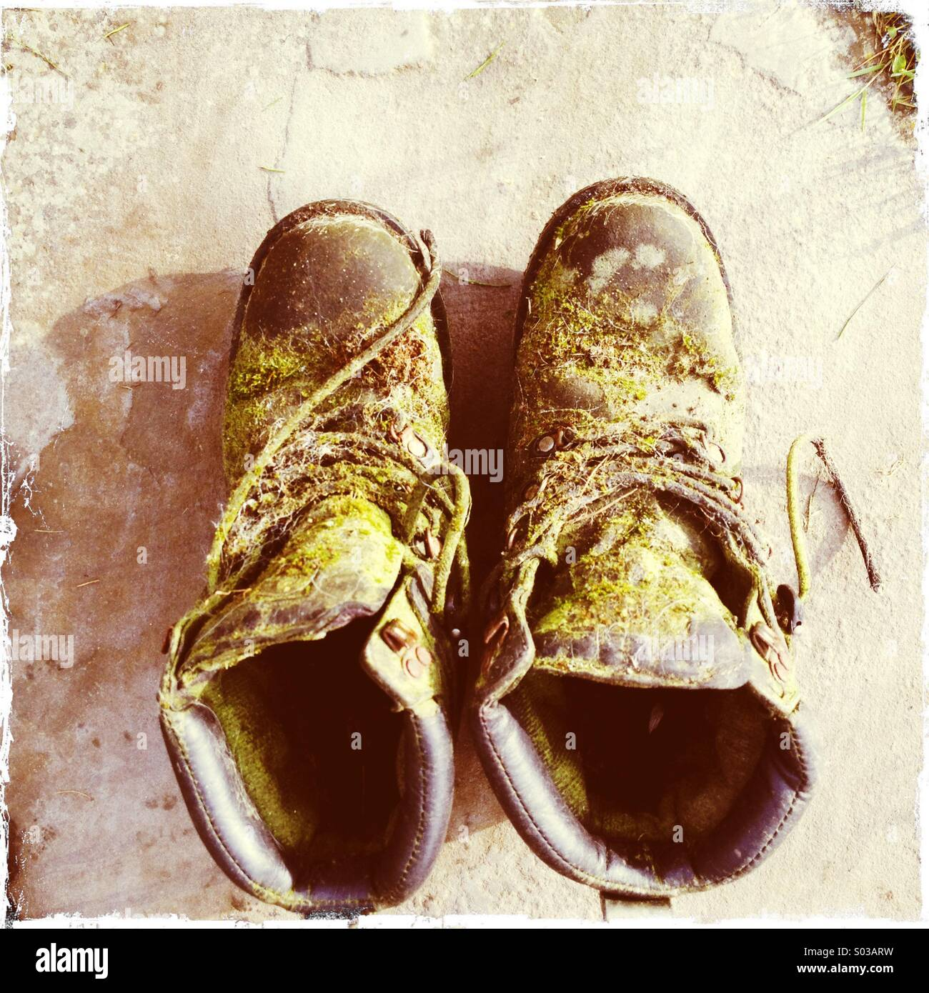 Rotten old moss and mould covered boots - Stock Image