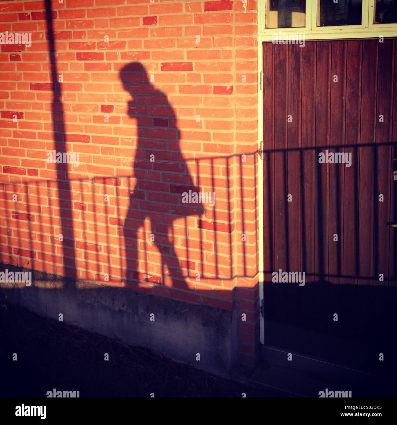 Shadow - Stock Image
