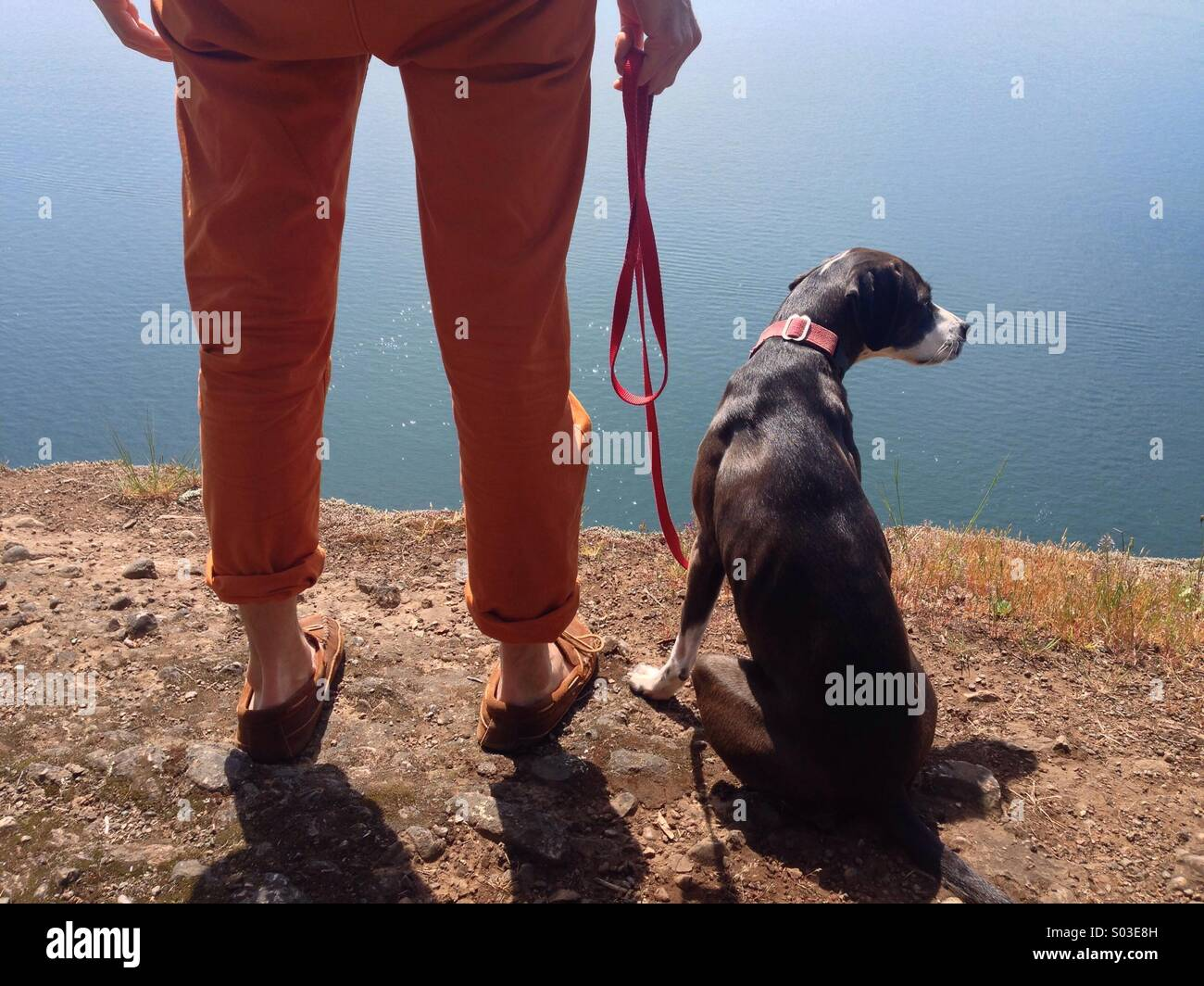 Man's legs and hand with dog high on cliff overlooking ocean in the sun. - Stock Image