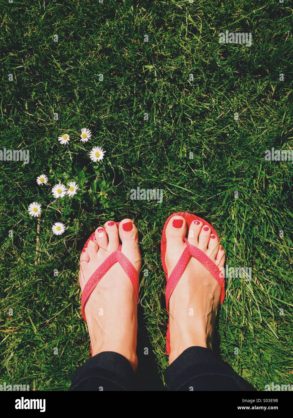 Stepping into spring - Stock Image