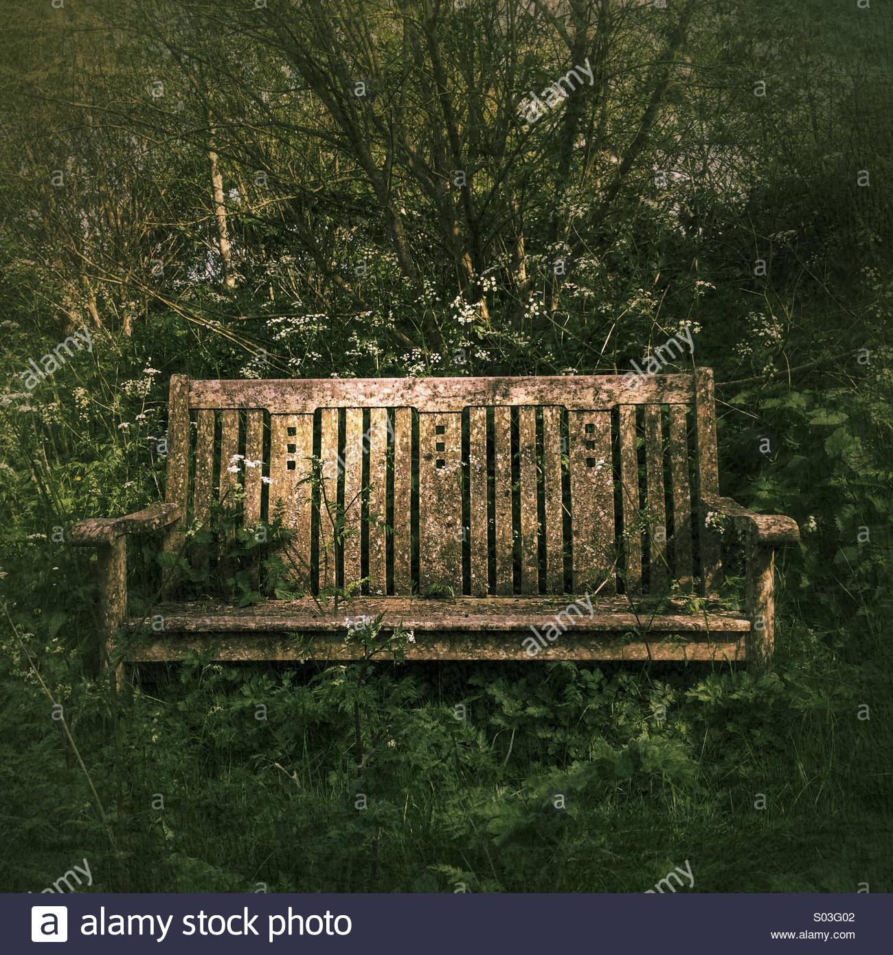 Old Wooden Seat or Bench - Stock Image