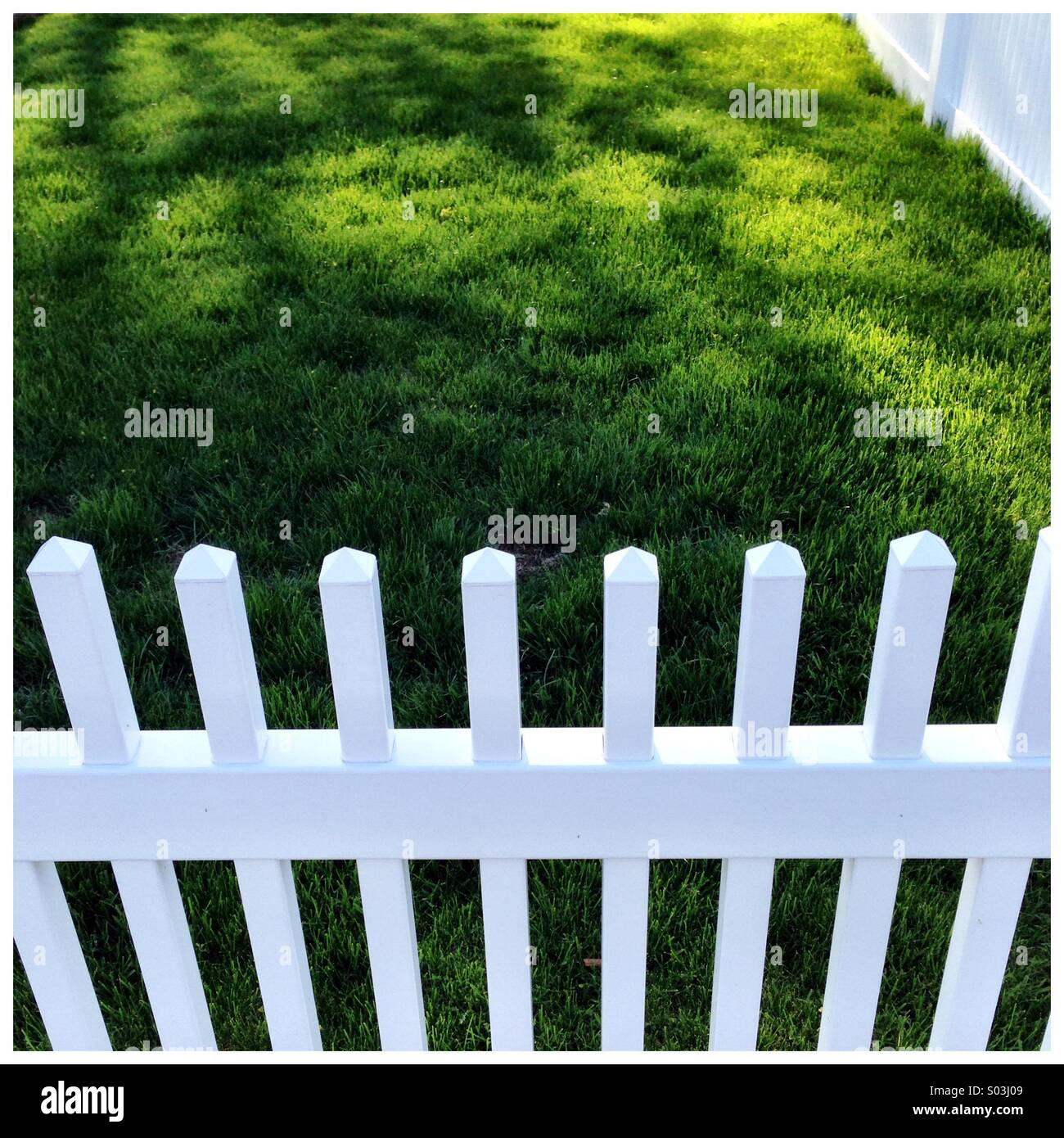 White picket fence - Stock Image