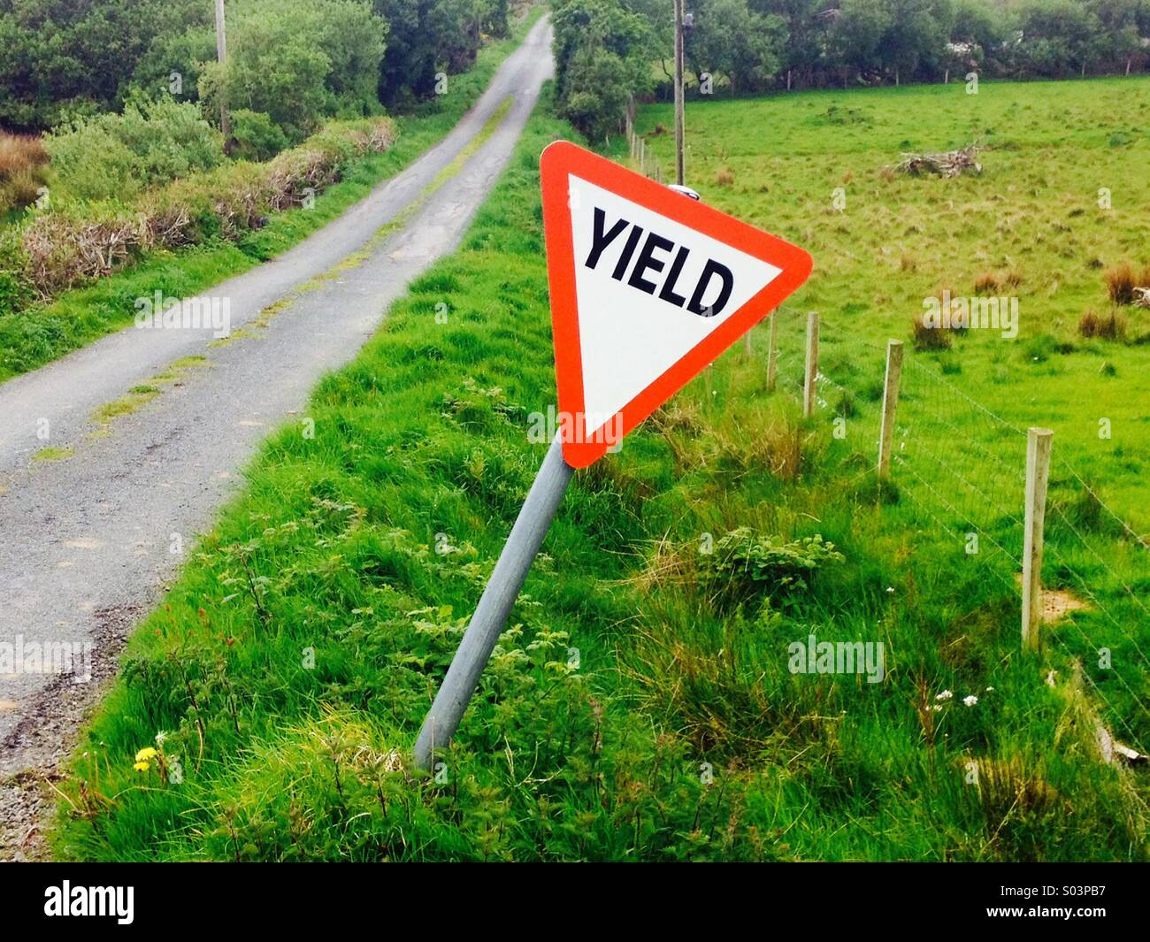 Yield or stop sign in rural Ireland financial meaning too Stock Photo