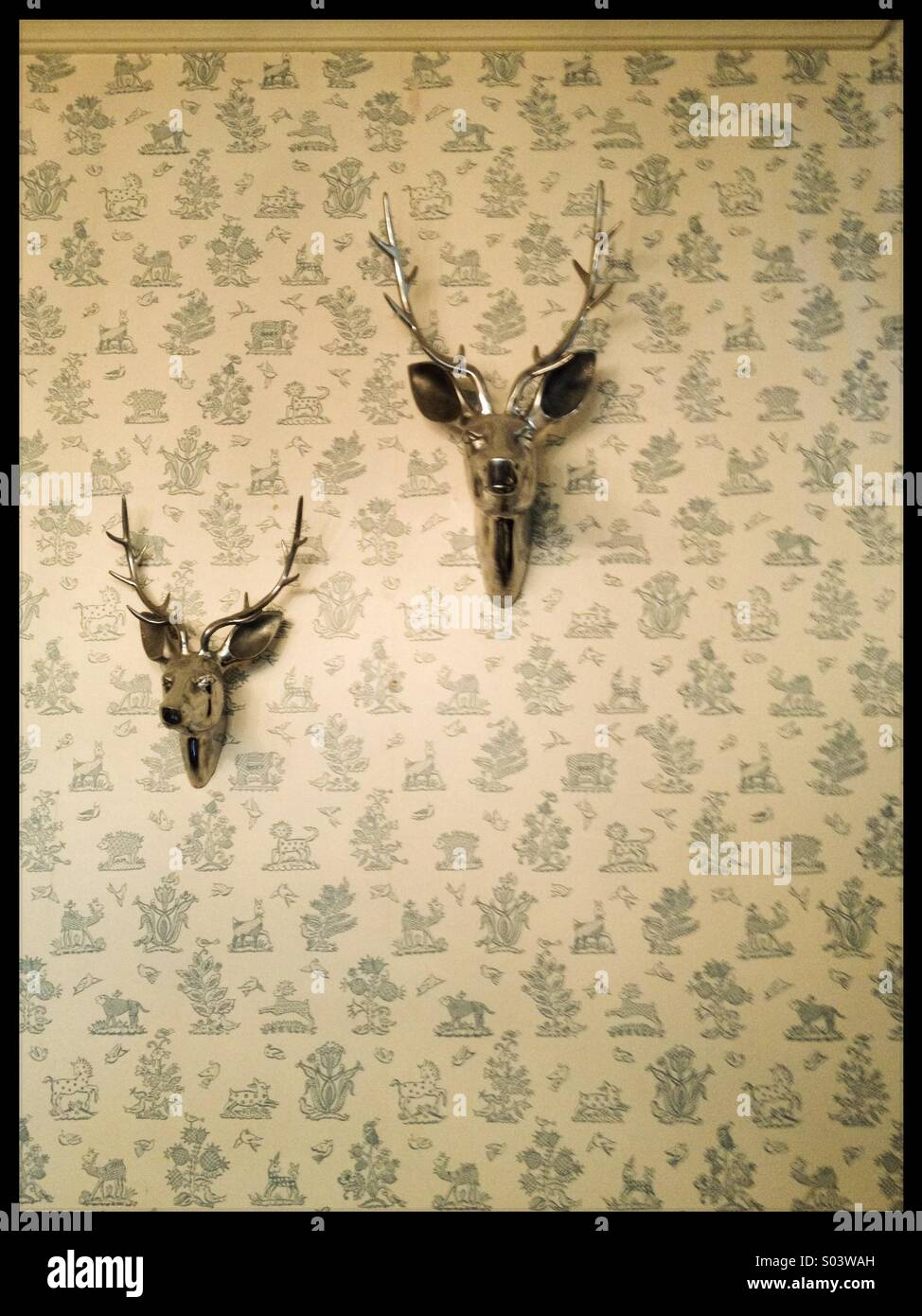 Silver stag heads on wall Stock Photo: 309872377 - Alamy