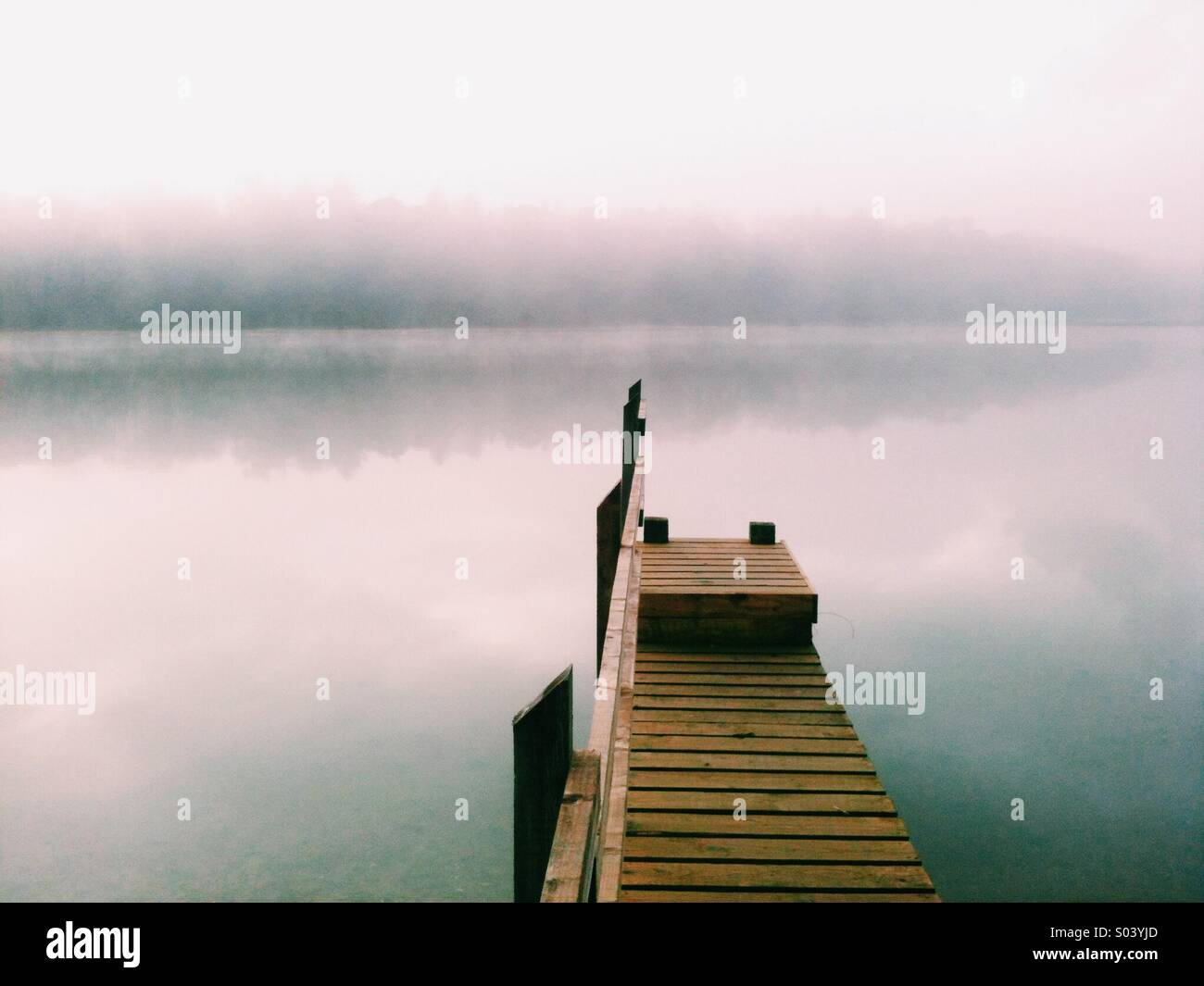 Wooden jetty on a tidal creek in Cornwall just after dawn, with sea mist and forest - Stock Image