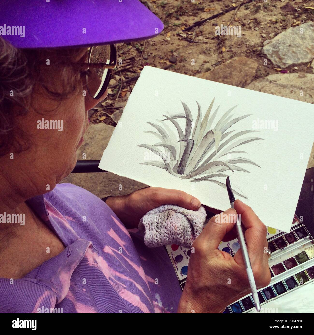 Martha Hill, Woman artist painting agave leaves in watercolors.  Chaparri Reserve, Peru Stock Photo