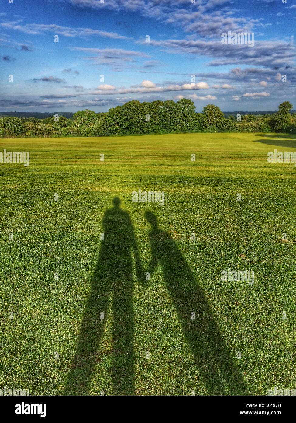 Shadows on field - Stock Image