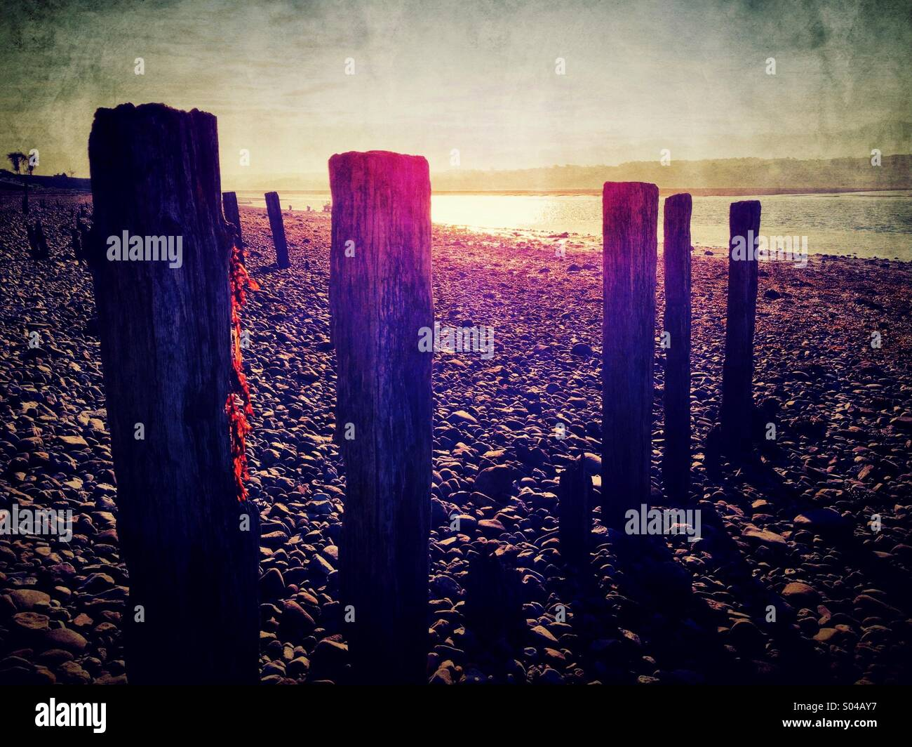 Backlit wooden posts by sea - Stock Image