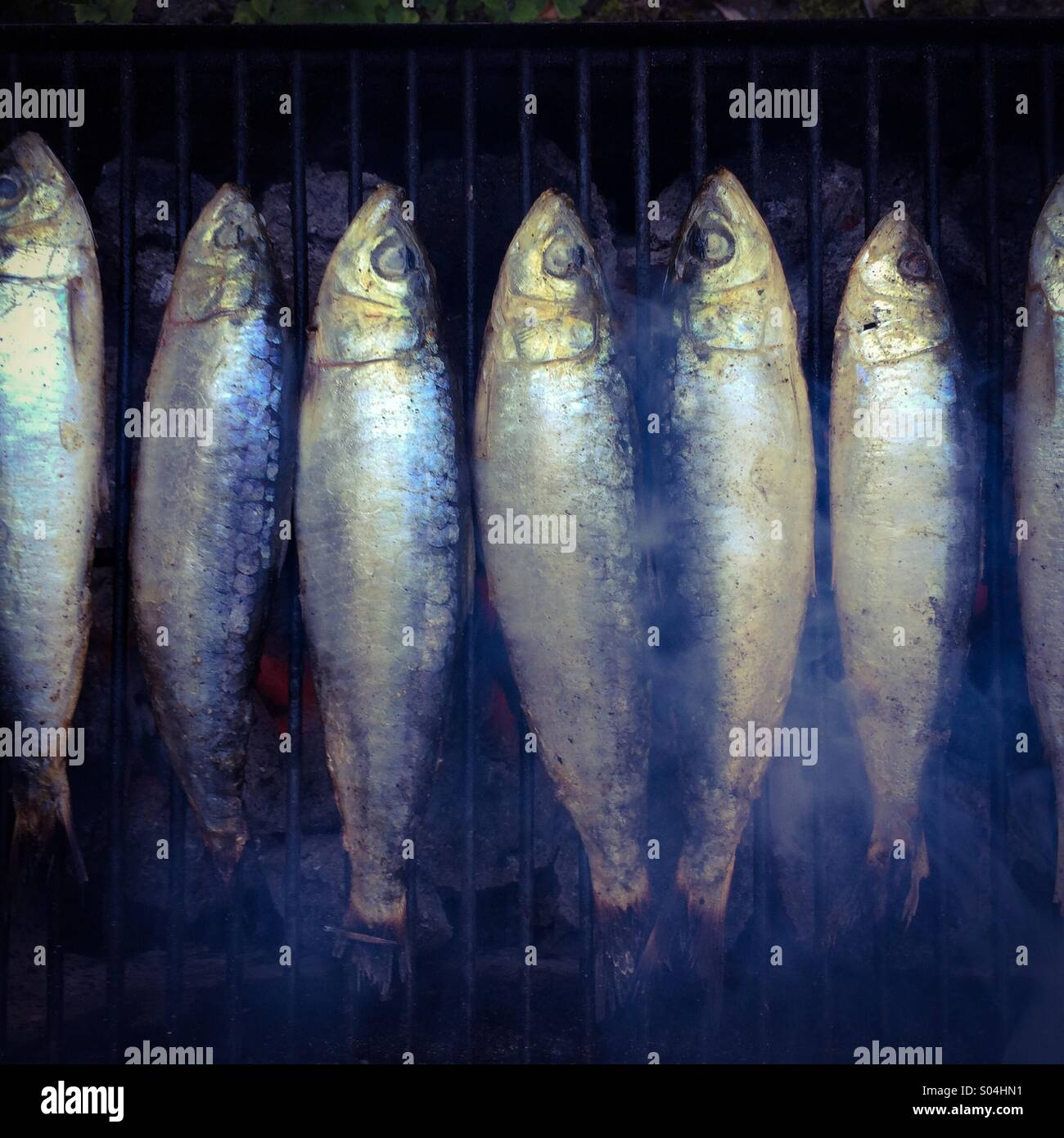Fresh sardines on a barbecue - Stock Image