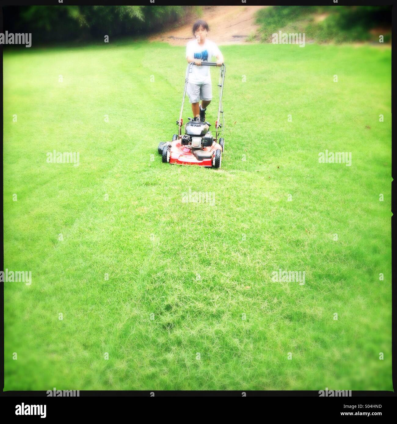 Little boy cutting grass - Stock Image