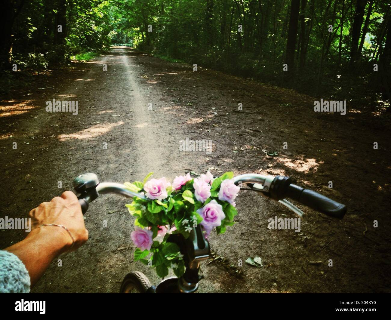 Cycling through the park, close up of woman's hand holding bicycle handlebar, view of Lane through woods, sun - Stock Image
