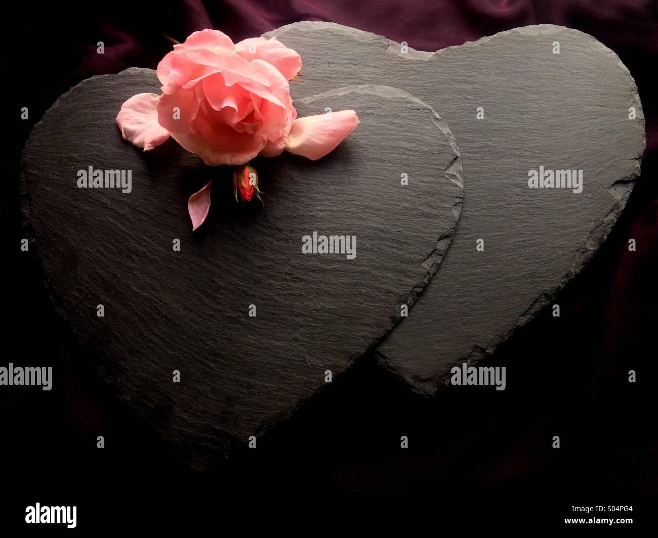 Tough love - Stock Image