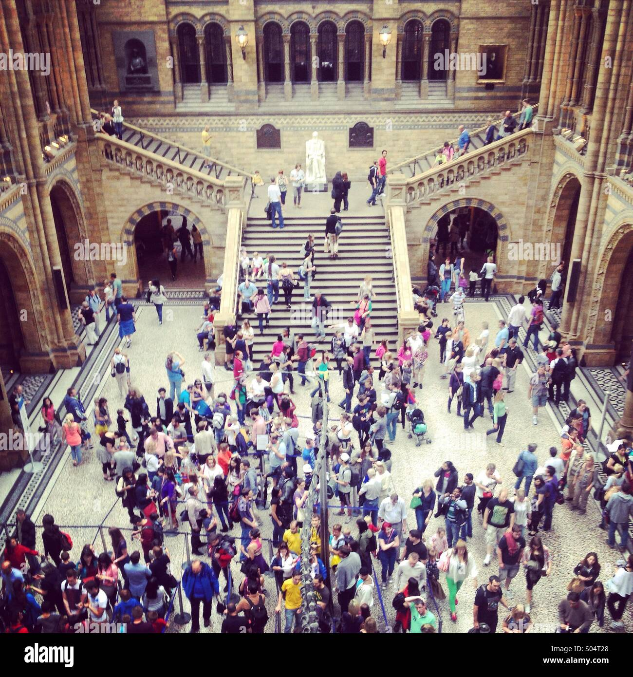 Inside the Natural History Museum in London - Stock Image