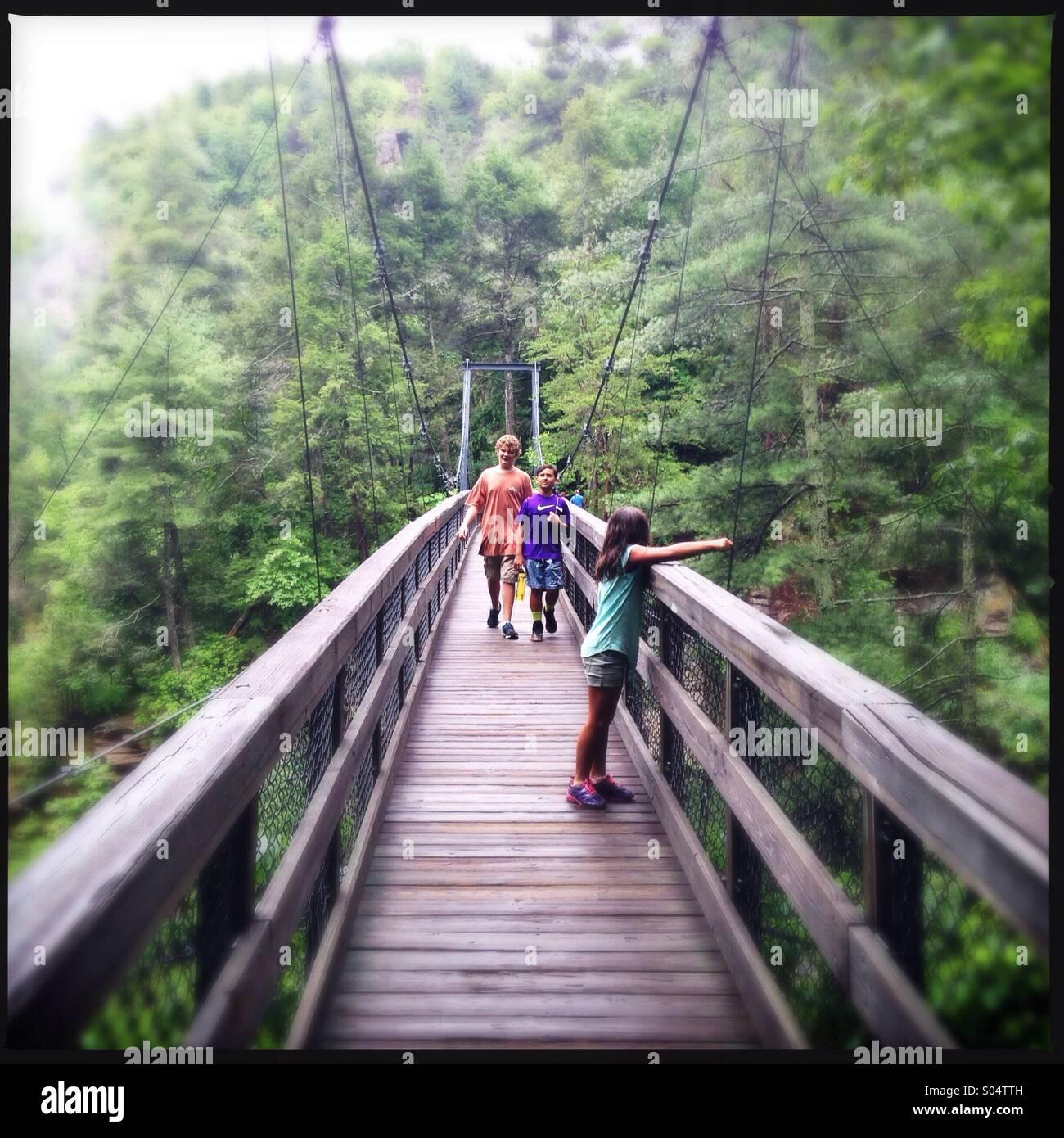 Tallulah gorge park in Georgia, USA - Stock Image