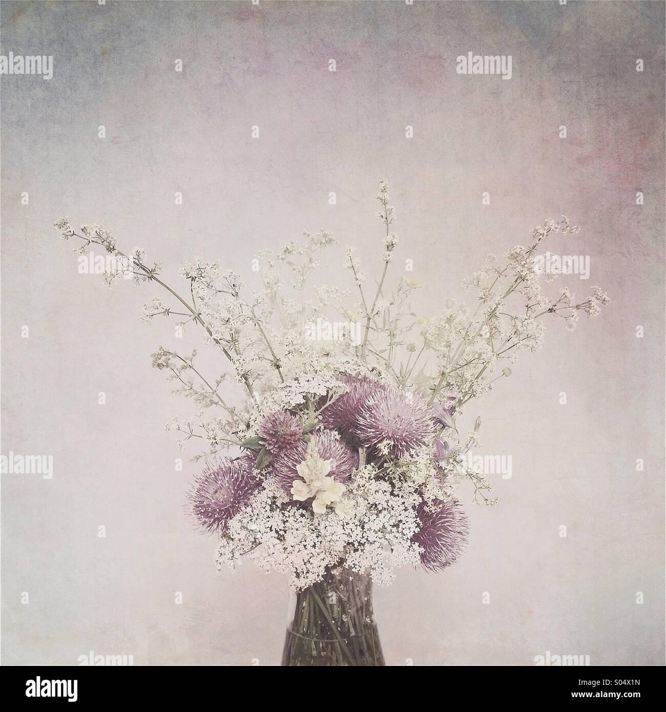 Wild flowers - Stock Image