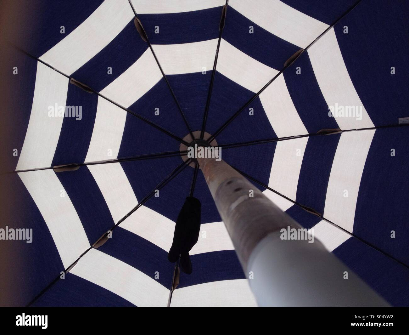 Parasol seen from below - Stock Image