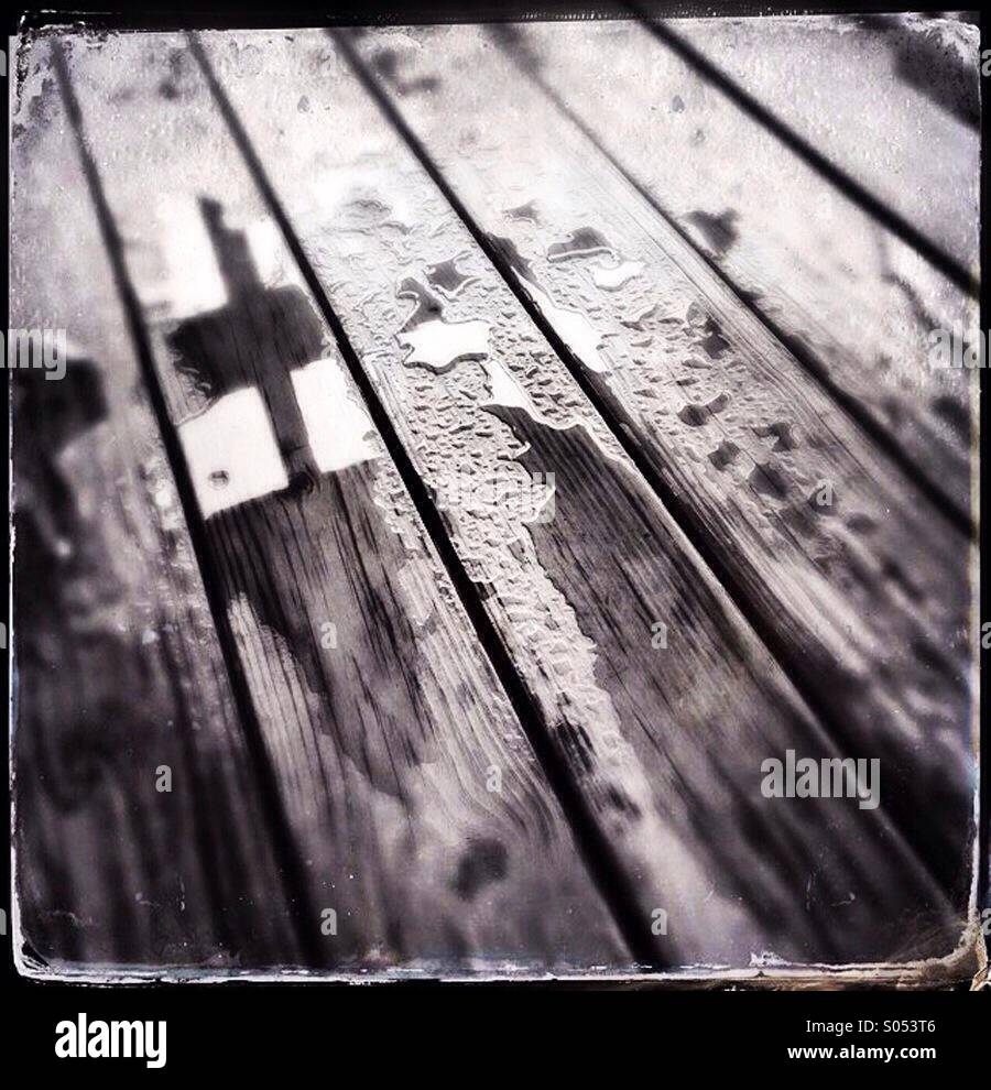 Wet Wood - Stock Image