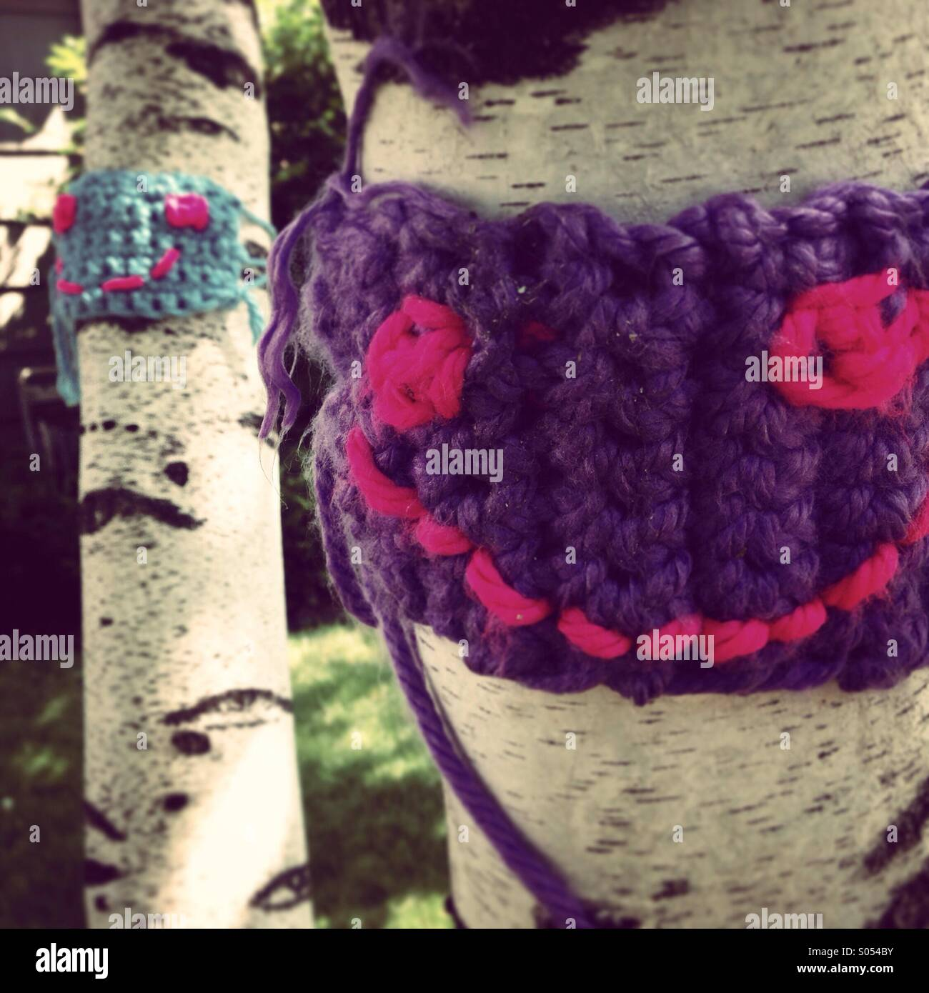 Yarn bomb on birch tree. - Stock Image