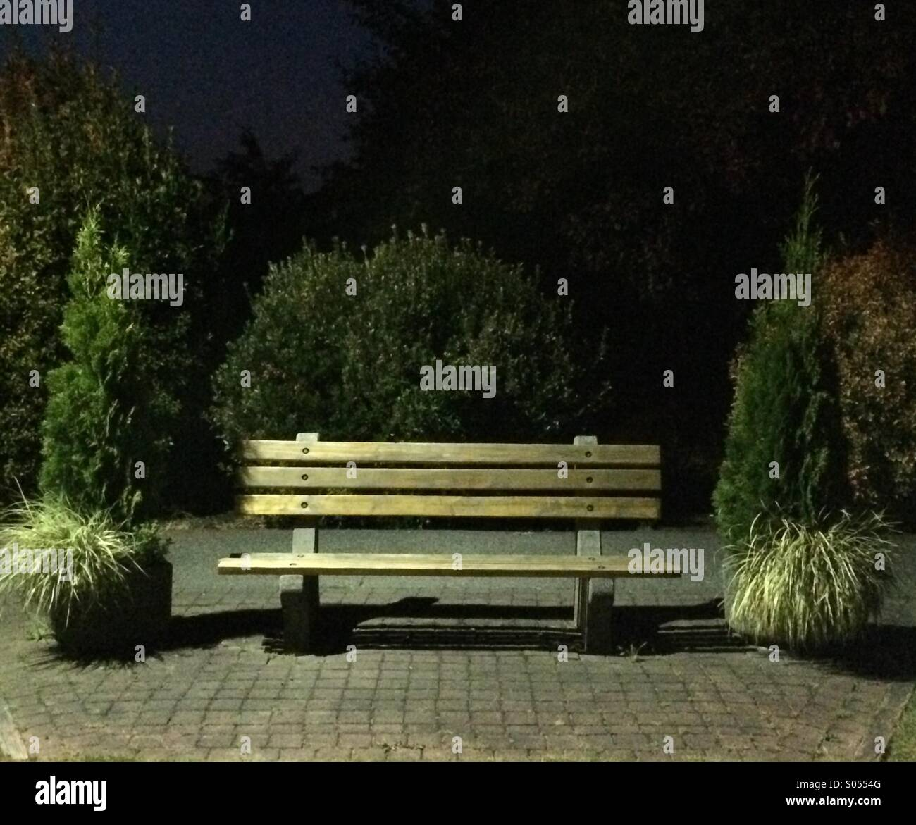 Empty Park Bench As Night Sets In Stock Photo 309900432 Alamy