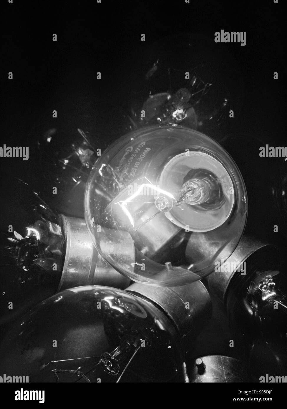 Monochrome view of electric light bulbs - Stock Image