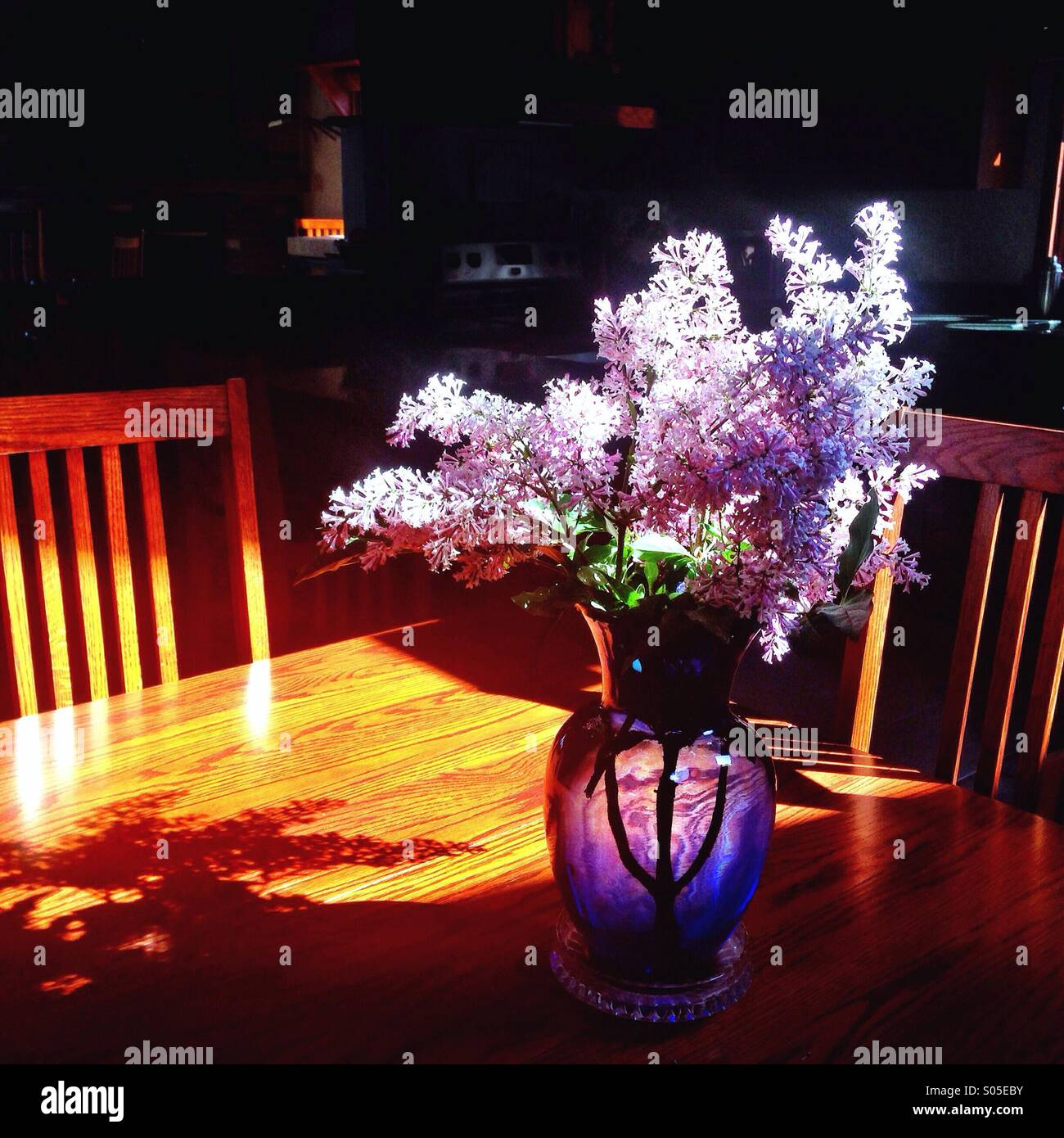 Lilacs in sunshine on wooden table - Stock Image
