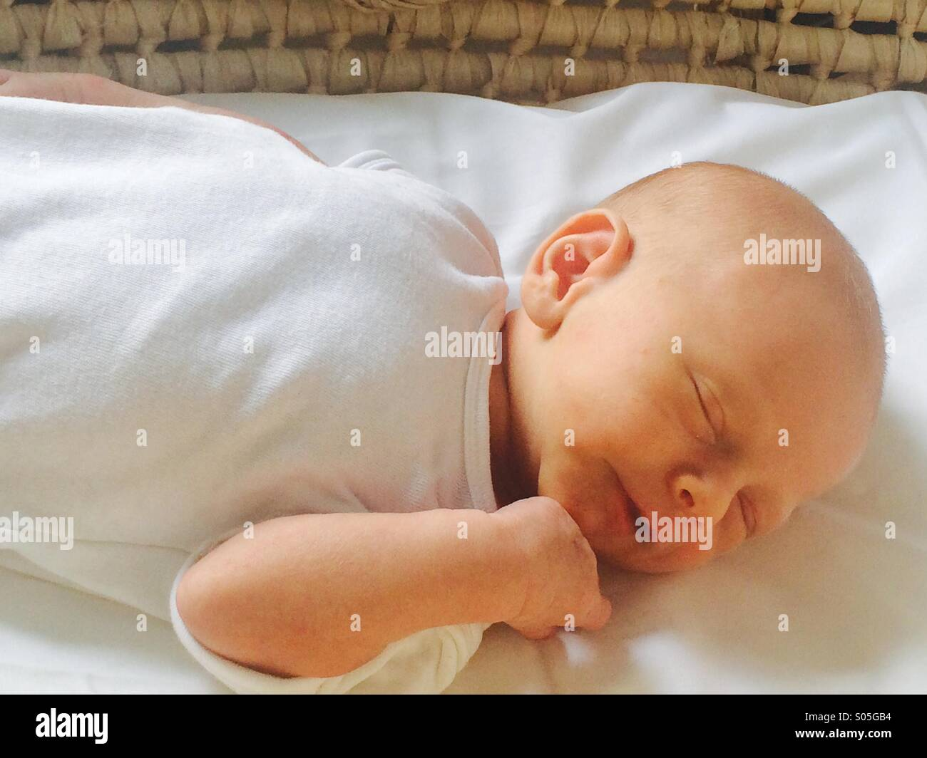 One week old baby boy asleep in Moses basket - Stock Image